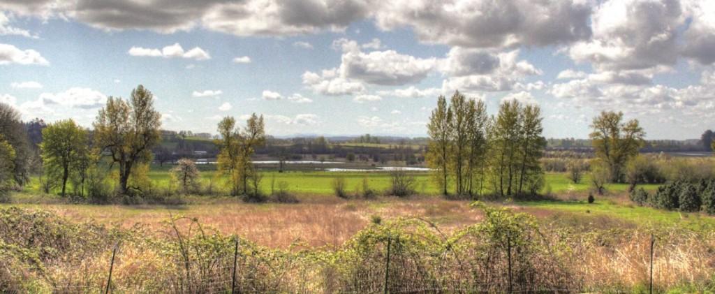 Salem View