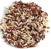 Quinoa Lentil Wild Rice Trio